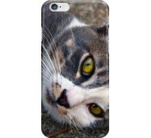 CAT PORTRAIT CLOSE UP iPhone Case/Skin