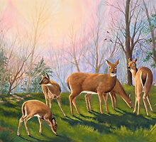 """Deer at Dawn"" - Early morning in the mountains by Rainelle  Meridith"