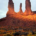 Navajo Country by photosbytony