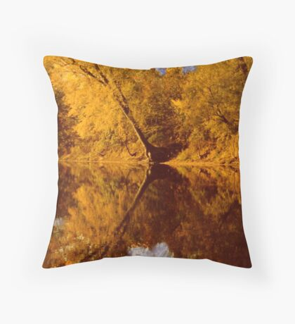 The River of Reflection Throw Pillow