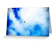 The Swallow. Greeting Card