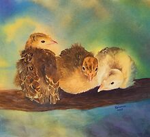"""Turkey Toddler Trio"" - Baby Turkeys on the Roost by Rainelle  Meridith"
