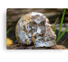 Agate Carved Crystal Skull  Canvas Print