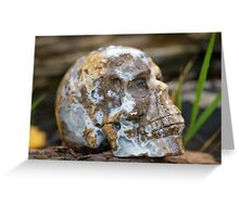 Agate Carved Crystal Skull  Greeting Card