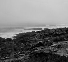 """ Marginal Way - Ogunquit, Maine "" by DeucePhotog"