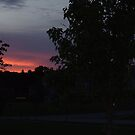 Sunset Grand Point Meadows by Kenneth Massara