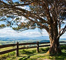 McHugh Lookout by photographybydr