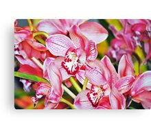 Truth's Beauty Orchids Canvas Print