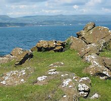 Brown's Bay headland, Islandmagee, Northern Ireland by aldfreckian