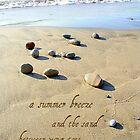 A walk on the  beach by grace31
