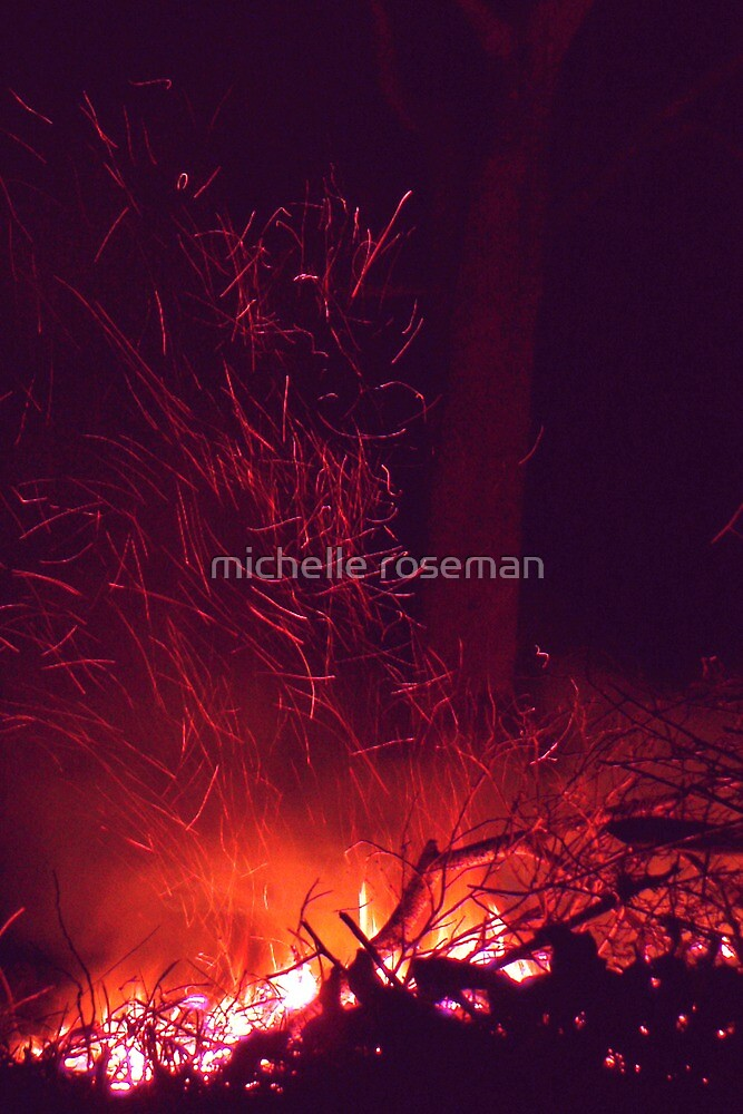 Aussie Bonfire by michelle roseman