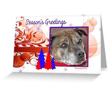 CC30 - Staffordshire Bull Terrier Greeting Card