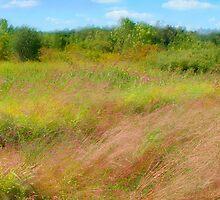 Meadow #1 by Jessica Dzupina