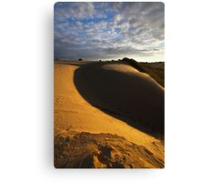 Dune Fringe Canvas Print