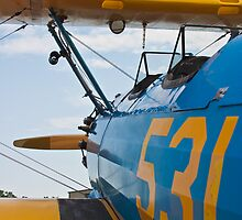 Boeing Stearman 531 Body Shot by Henry Plumley