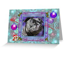 CC108 - Staffordshire Bull Terrier Greeting Card