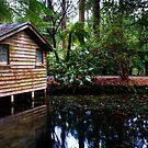 Lake House by Ryan Cawse
