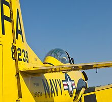 Tail shot of 138239, N726A T-28B Trojan by Henry Plumley