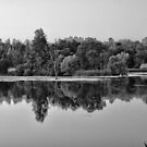 pond by Lenny La Rue, IPA