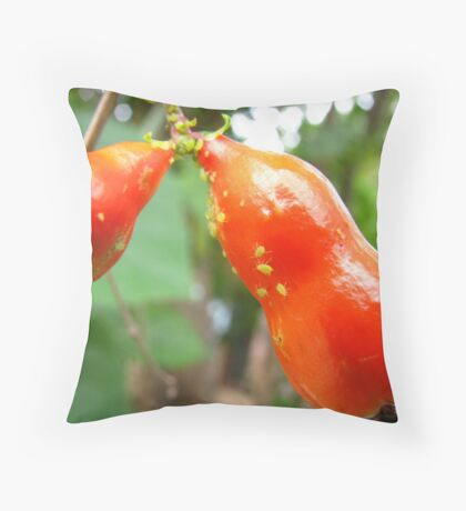 Pomegranate fruit with tiny green bugs Throw Pillow