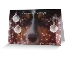 CC91 - Australian Shepherd Dog Greeting Card