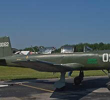 NX62157 CJ-6A Nanchang, Green Dragon by Henry Plumley