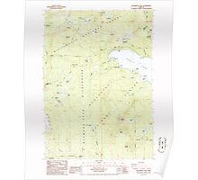 USGS Topo Map Oregon Willamette Pass 282101 1986 24000 Poster