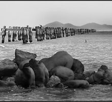 Old Jetty-Clifton Springs by Petal O'Dell