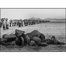 Old Jetty-Clifton Springs Photographic Print