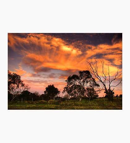 Sunset on Dog Rocks Road Photographic Print