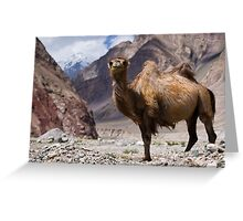Gateway to the Karakoram Highway Greeting Card