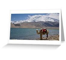 Phone coverage at Lake Kara Kul Greeting Card