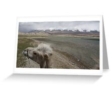 Camel at Lake Kara Kul Greeting Card