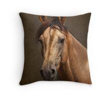 Portrait of a Stallion Throw Pillow