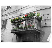 Italian Flower Balcony Poster