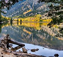 A Peek Into Cottonwood Lake by Bo Insogna