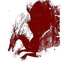 Dragon Grunge Photographic Print