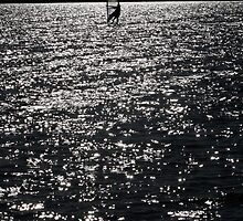 Wind Surfing - West Kirby Marine Lake  by costello
