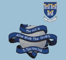 The Hill is alive with  the Dubs by Declan Carr
