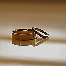 Wedding Bands by dgscotland