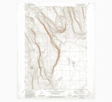 USGS Topo Map Oregon Corporation Rim 279442 1971 24000 One Piece - Short Sleeve