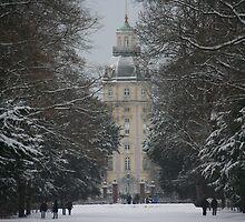 European Winters! by Vishal Pandey