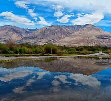 The Beauty of Nature in Laddakh-3/2011 by Mukesh Srivastava
