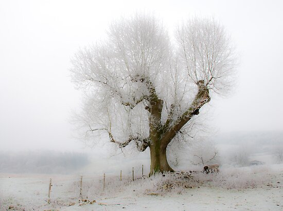 Winter on Bredon Hill by Mark Zytynski