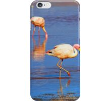 Flamingos in Salar de Uyuni iPhone Case/Skin