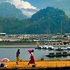 Shrimp Farm near Bang Saphan Yai Thailand by bulljup