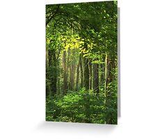 Looking Through God's Window Greeting Card