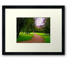 Path, leading to a crossroad Framed Print