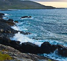 West Coast Barra by Lawrence McWatt