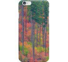 Fall in the Cascades iPhone Case/Skin